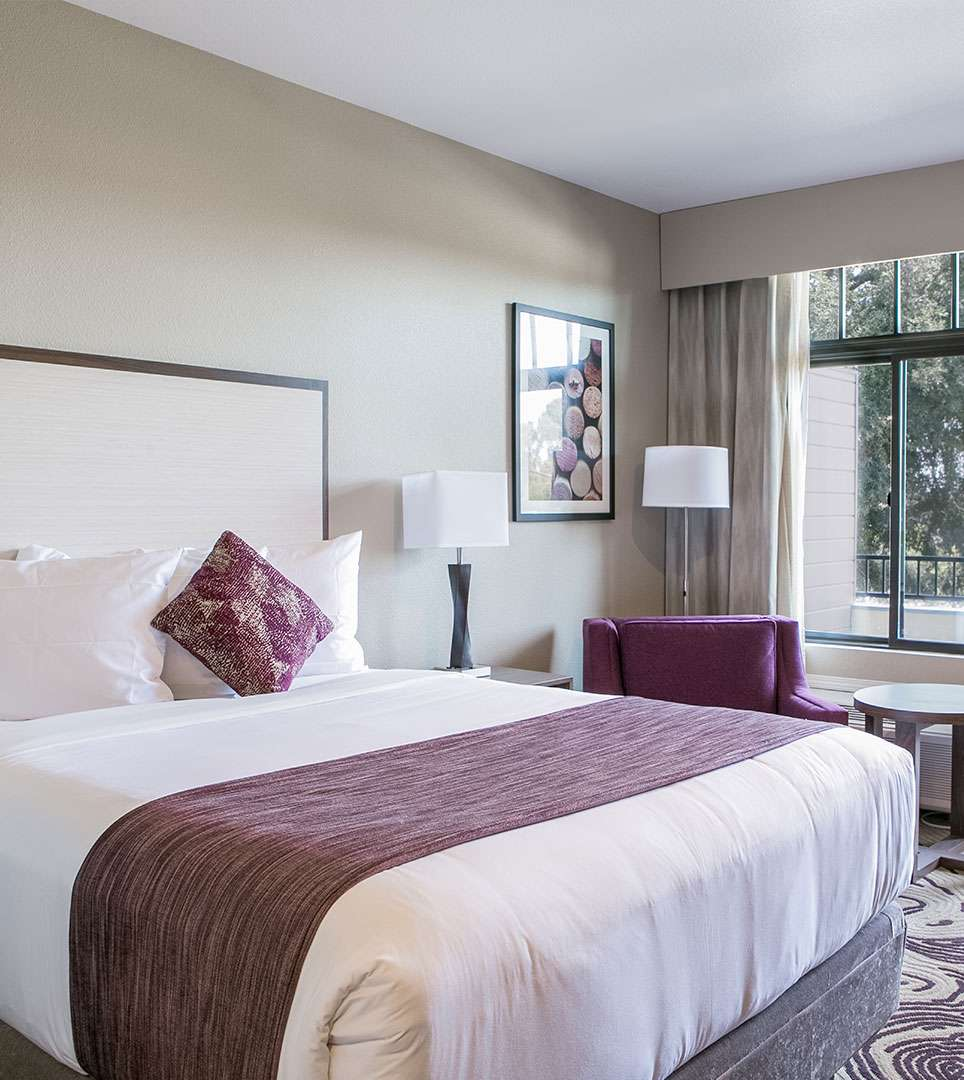 EXPLORE OUR BOUTIQUE GUEST ROOMS